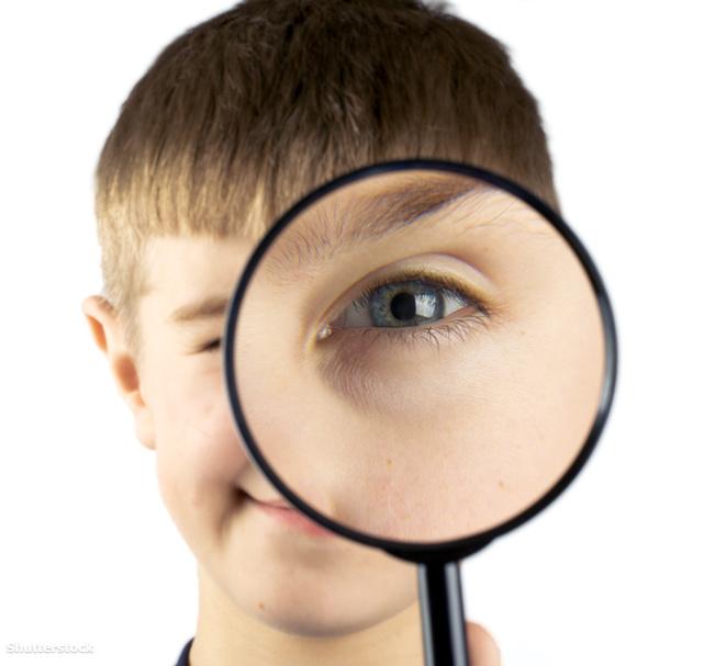 az egészséges látás titkai lehetséges-e fekvőtámaszok gyenge látással?