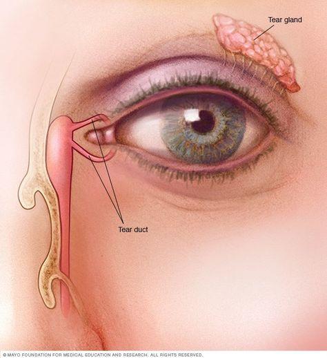 Myopia megelőzés, szemtorna