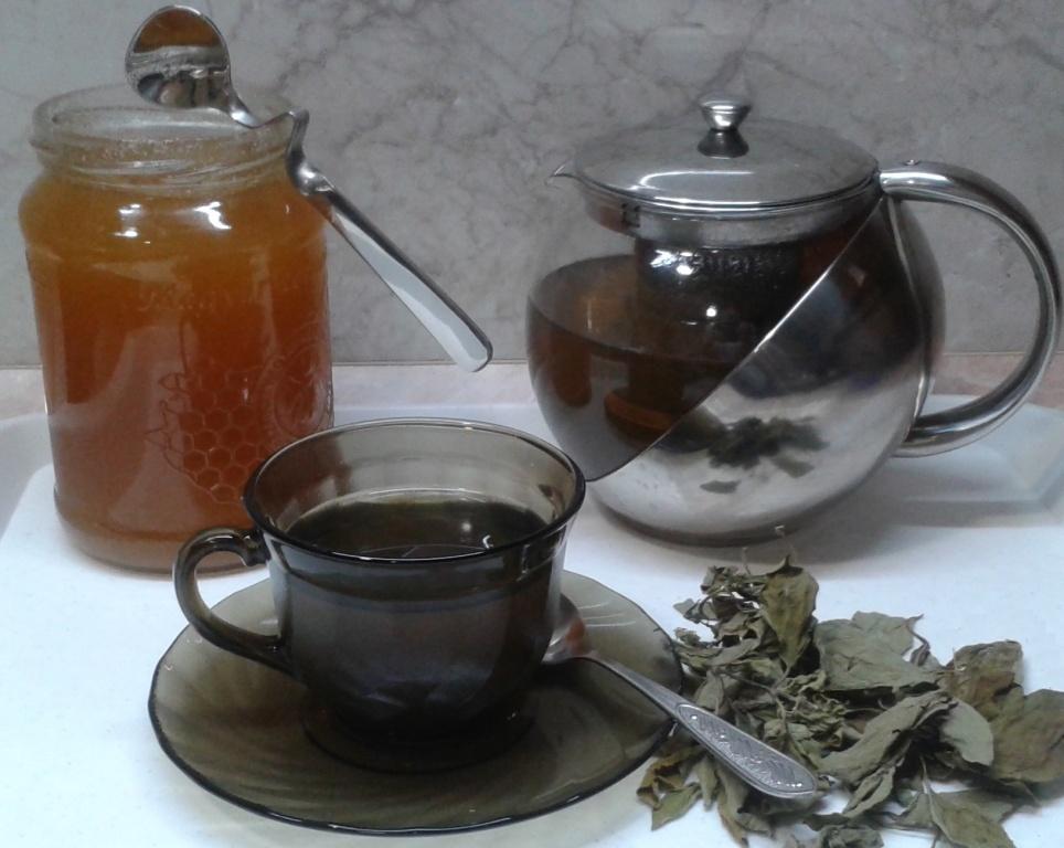 POLGÁR Optika :: A zöld tea és a szem