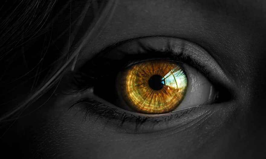 befolyásolja a látásökológiát)
