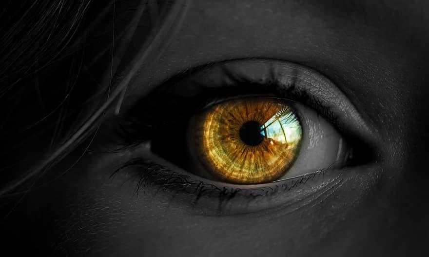 látomás miért két szem látássérült vakfoltok