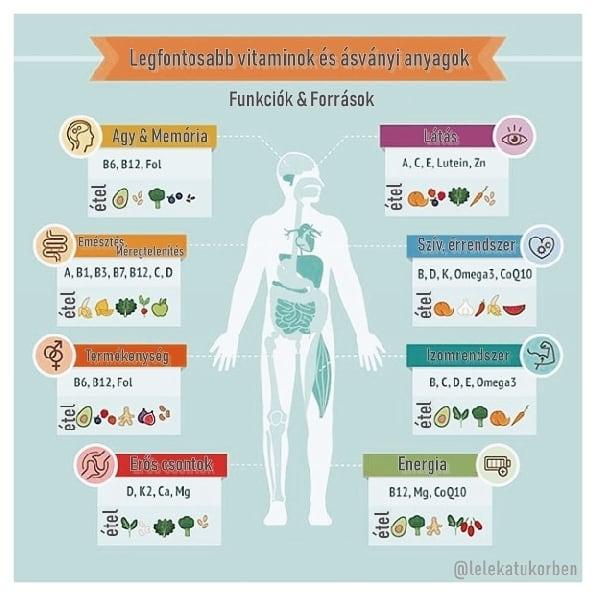vitaminok az agy látásához)
