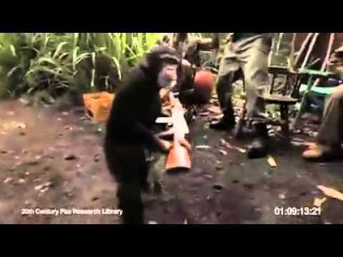 rovento.hu : Mozi : DVD : A majmok bolygója ()