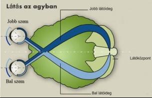 Roska Botond: Olyan vakság, amin nem lehet segíteni, nem létezik - Qubit