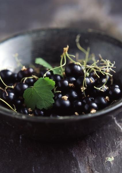 Látásjavítás, Szem vitamin – rovento.hu