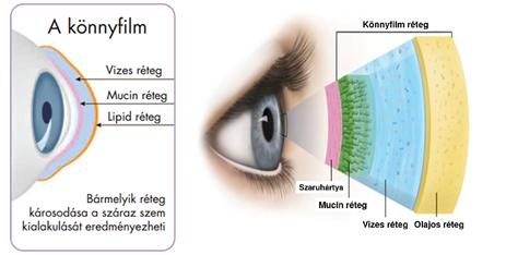 ami jó a látásra egészséges látás idős korban