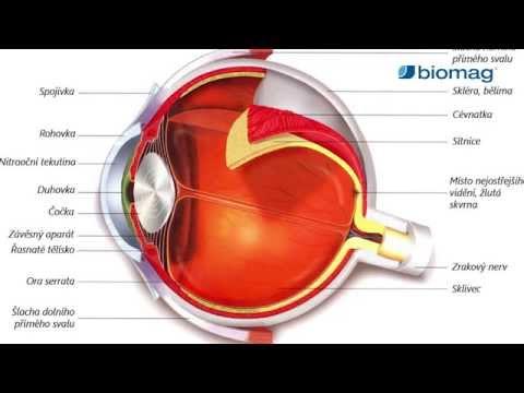 glaukóma és myopia