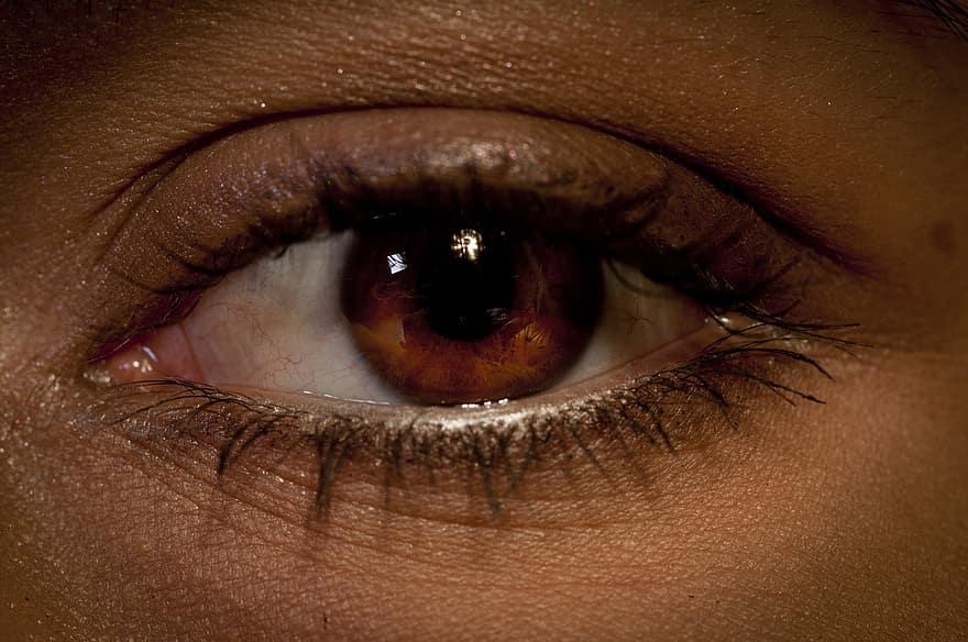 szem, szemöldök, látás, látomás, szempilla, néz, Kilátás, modell, férfi, szőke