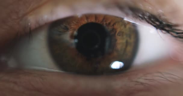 Hogyan lehet hatékonyan kezelni a rossz látást - Injekciók September