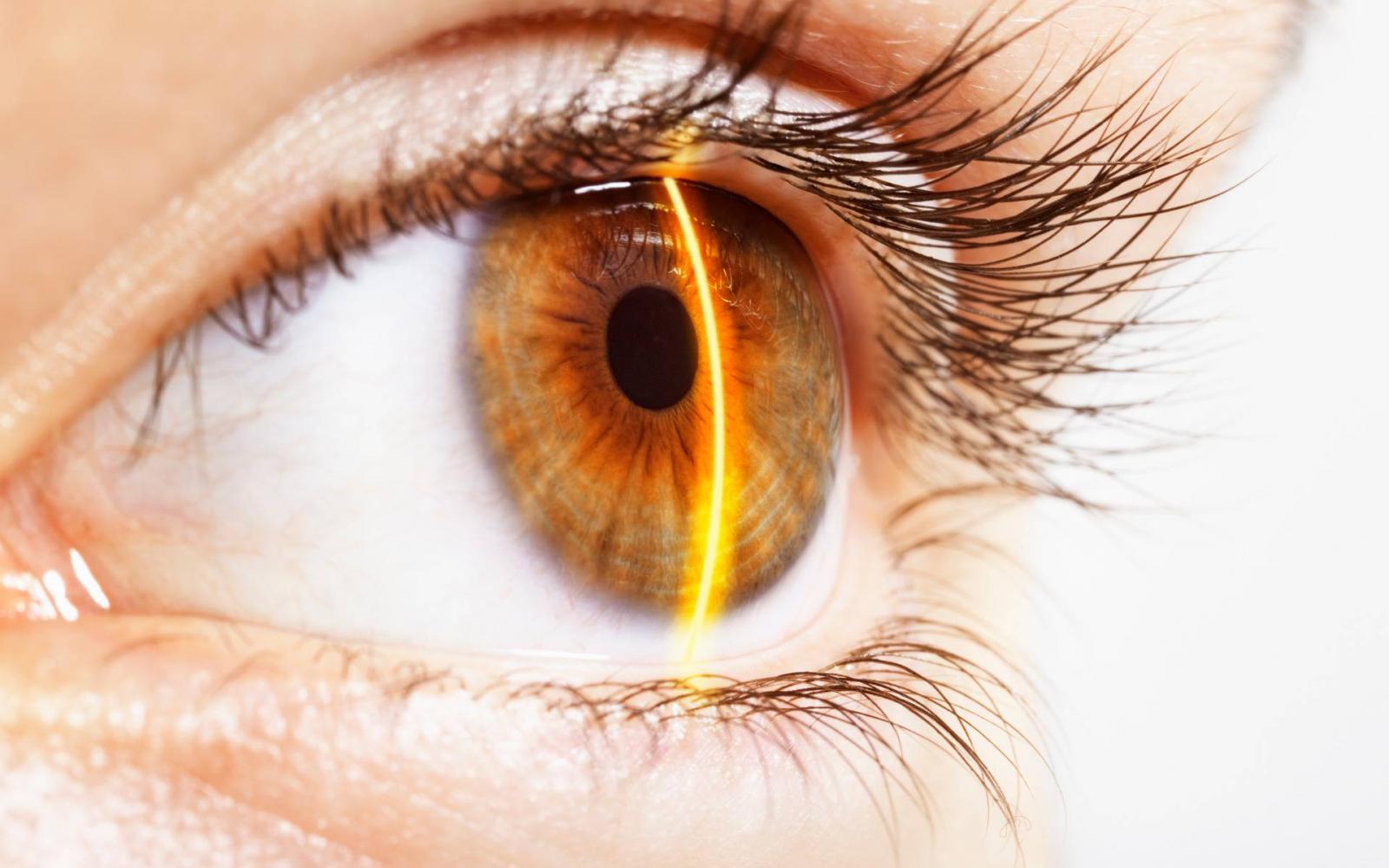 a látás érrendszeri genezise
