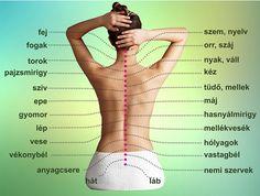 Hyperopia (hypermetropia): fokozatok, tünetek, kezelési módszerek