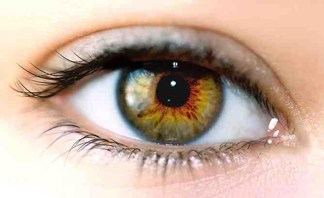 hogyan lehet javítani a makula látását