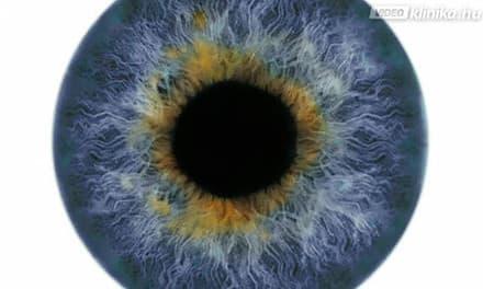 mit jelent a látás mínusz 8