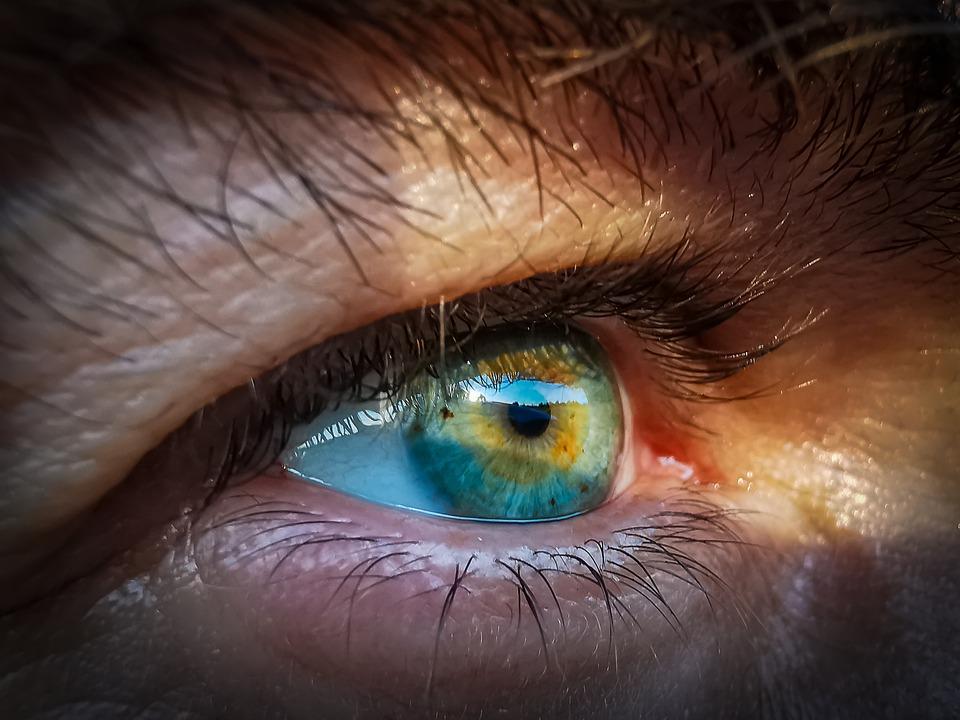 mi a látássérültek látása