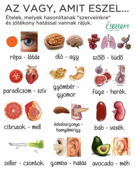 Szemüveg recept recept - Színes vakság September