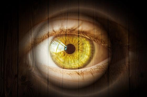 Emberi látás energia